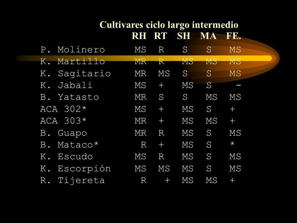 Cultivares ciclo largo intermedio RH RT SH MA FE.