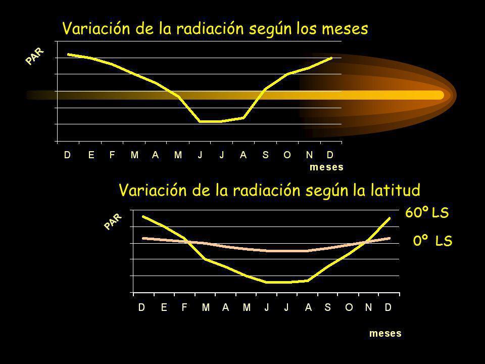 Variación de la radiación según los meses
