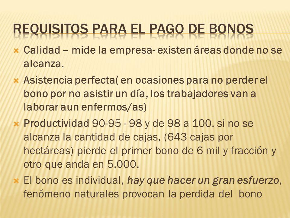Requisitos para el pago de bonos