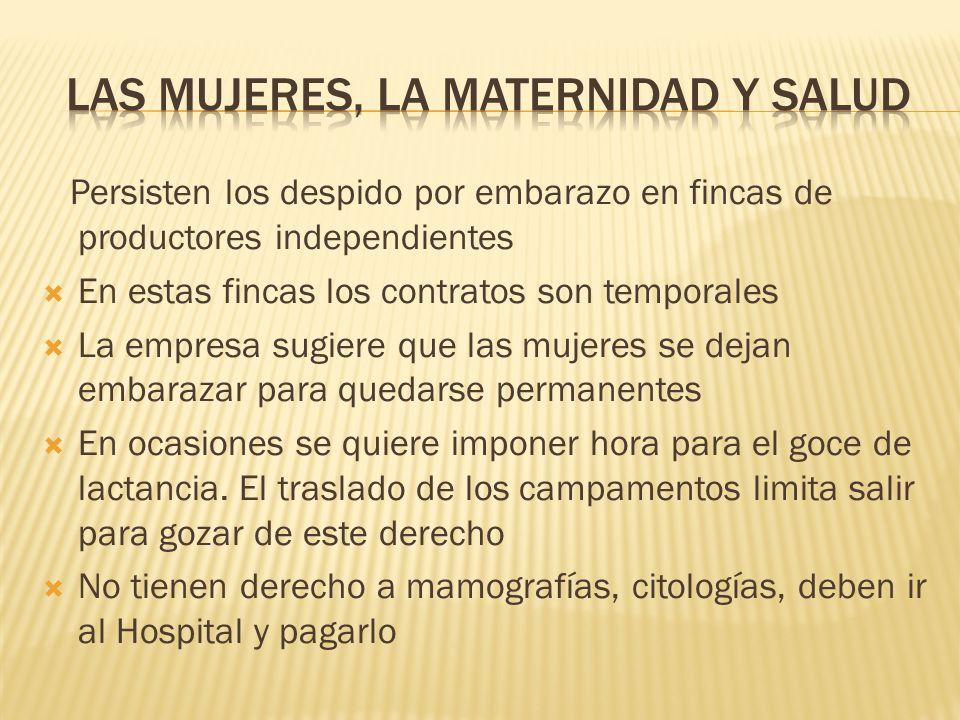 Las mujeres, la maternidad y salud