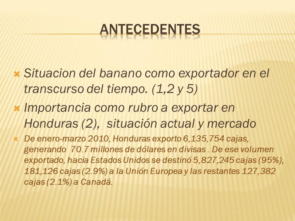 antecedentes Situacion del banano como exportador en el transcurso del tiempo. (1,2 y 5)