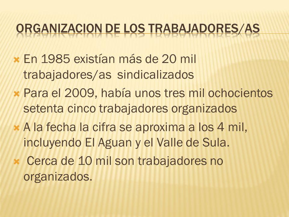 organizacion de los trabajadores/as