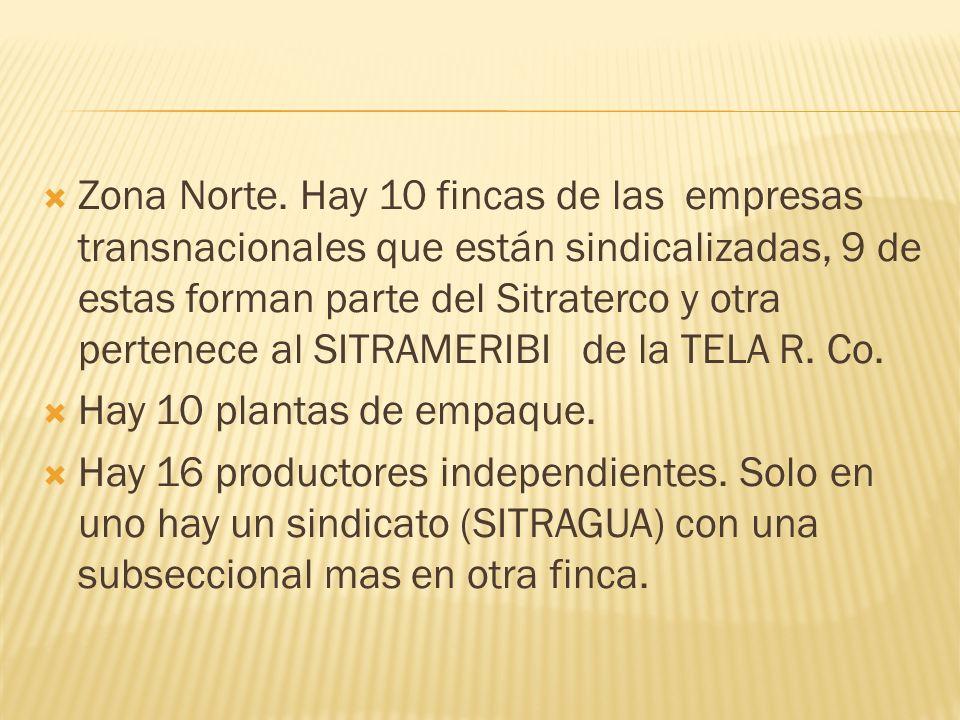 Zona Norte. Hay 10 fincas de las empresas transnacionales que están sindicalizadas, 9 de estas forman parte del Sitraterco y otra pertenece al SITRAMERIBI de la TELA R. Co.