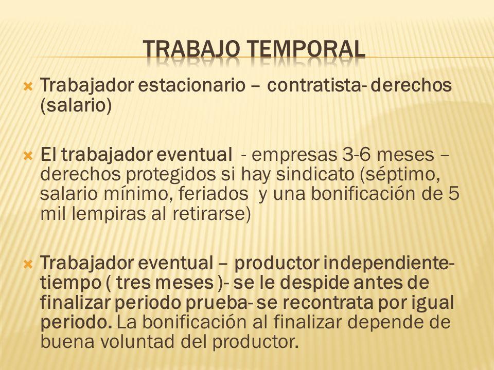 trabajo temporal Trabajador estacionario – contratista- derechos (salario)
