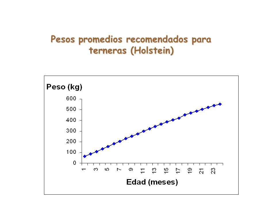 Pesos promedios recomendados para terneras (Holstein)