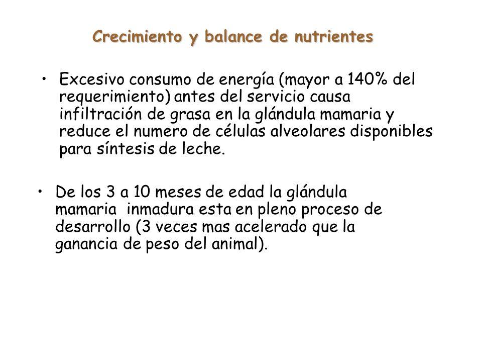 Crecimiento y balance de nutrientes
