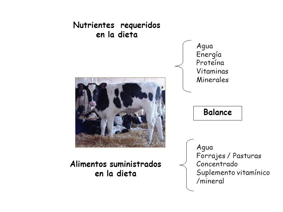 Nutrientes requeridos en la dieta Alimentos suministrados en la dieta