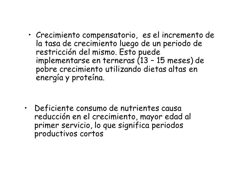 Crecimiento compensatorio, es el incremento de la tasa de crecimiento luego de un periodo de restricción del mismo. Esto puede implementarse en terneras (13 – 15 meses) de pobre crecimiento utilizando dietas altas en energía y proteína.