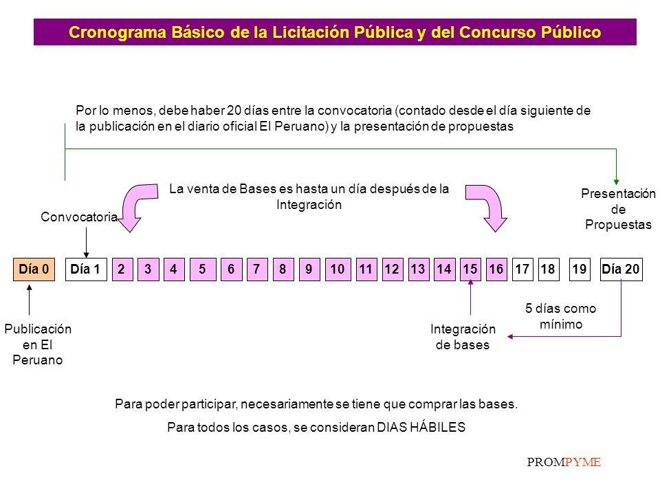 Cronograma Básico de la Licitación Pública y del Concurso Público
