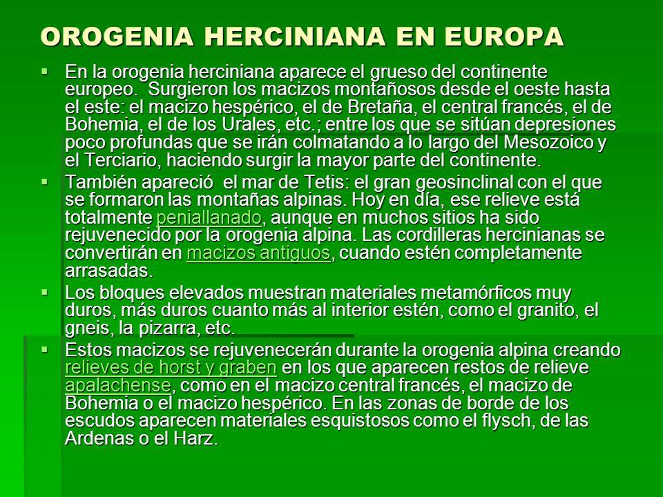 OROGENIA HERCINIANA EN EUROPA