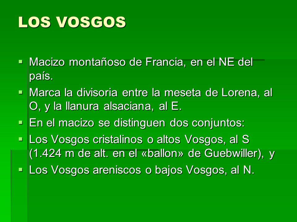 LOS VOSGOS Macizo montañoso de Francia, en el NE del país.
