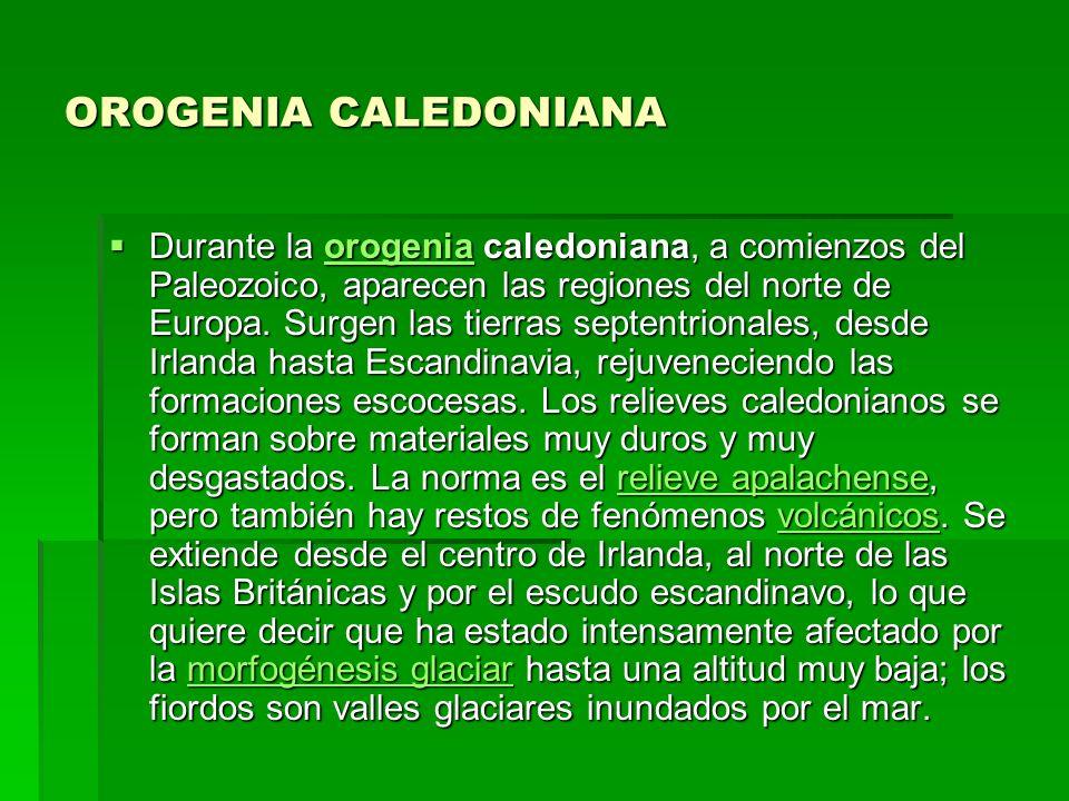 OROGENIA CALEDONIANA