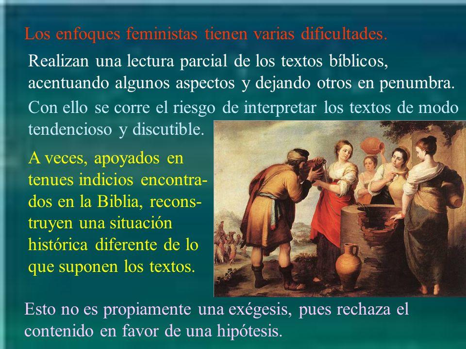 Los enfoques feministas tienen varias dificultades.