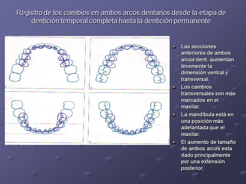 Registro de los cambios en ambos arcos dentarios desde la etapa de dentición temporal completa hasta la dentición permanente