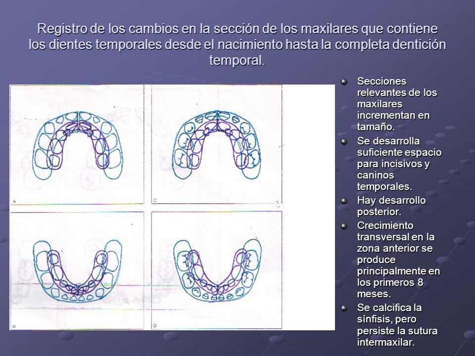 Registro de los cambios en la sección de los maxilares que contiene los dientes temporales desde el nacimiento hasta la completa dentición temporal.