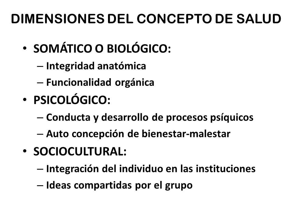 Hermosa Somática Anatomía Definición Modelo - Anatomía de Las ...