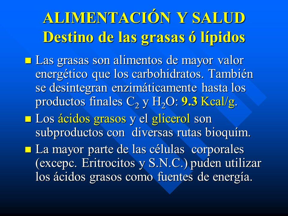 ALIMENTACIÓN Y SALUD Destino de las grasas ó lípidos