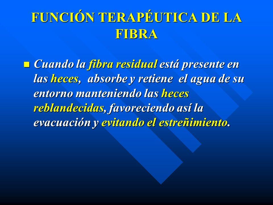 FUNCIÓN TERAPÉUTICA DE LA FIBRA