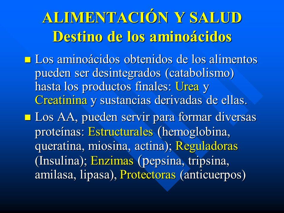 ALIMENTACIÓN Y SALUD Destino de los aminoácidos