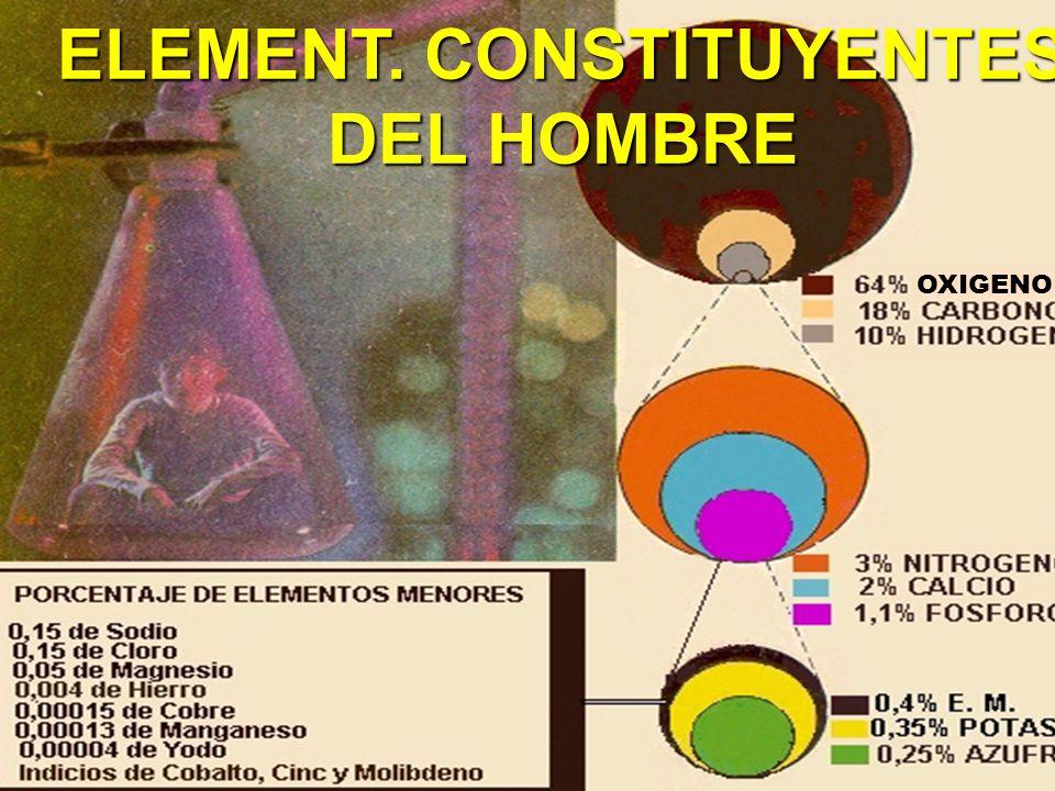ELEMENT. CONSTITUYENTES DEL HOMBRE