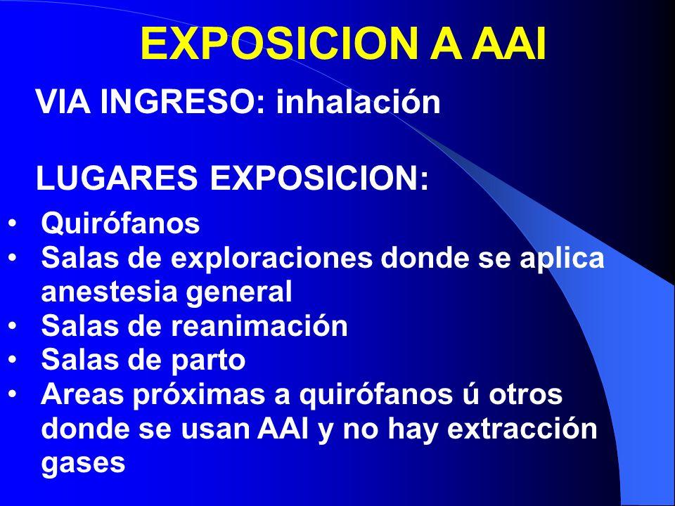 EXPOSICION A AAI VIA INGRESO: inhalación LUGARES EXPOSICION: