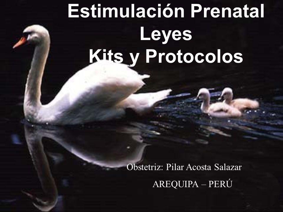 Estimulación Prenatal Leyes Kits y Protocolos