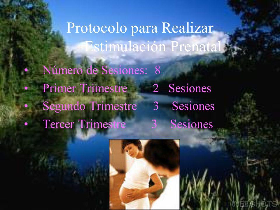 Protocolo para Realizar Estimulación Prenatal