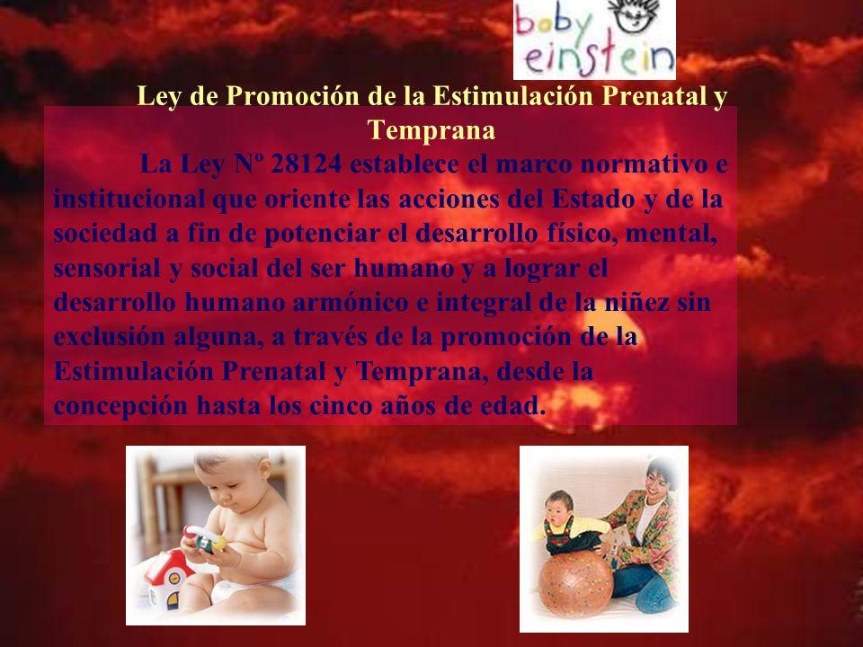 Ley de Promoción de la Estimulación Prenatal y Temprana
