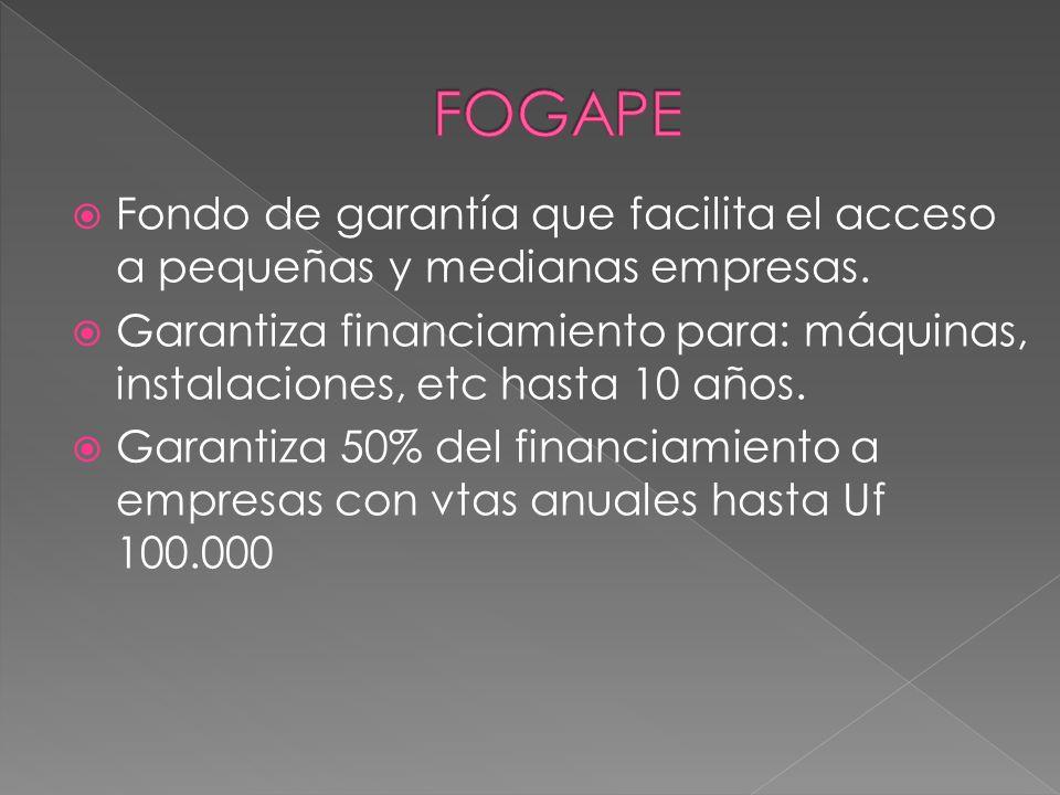 FOGAPE Fondo de garantía que facilita el acceso a pequeñas y medianas empresas.
