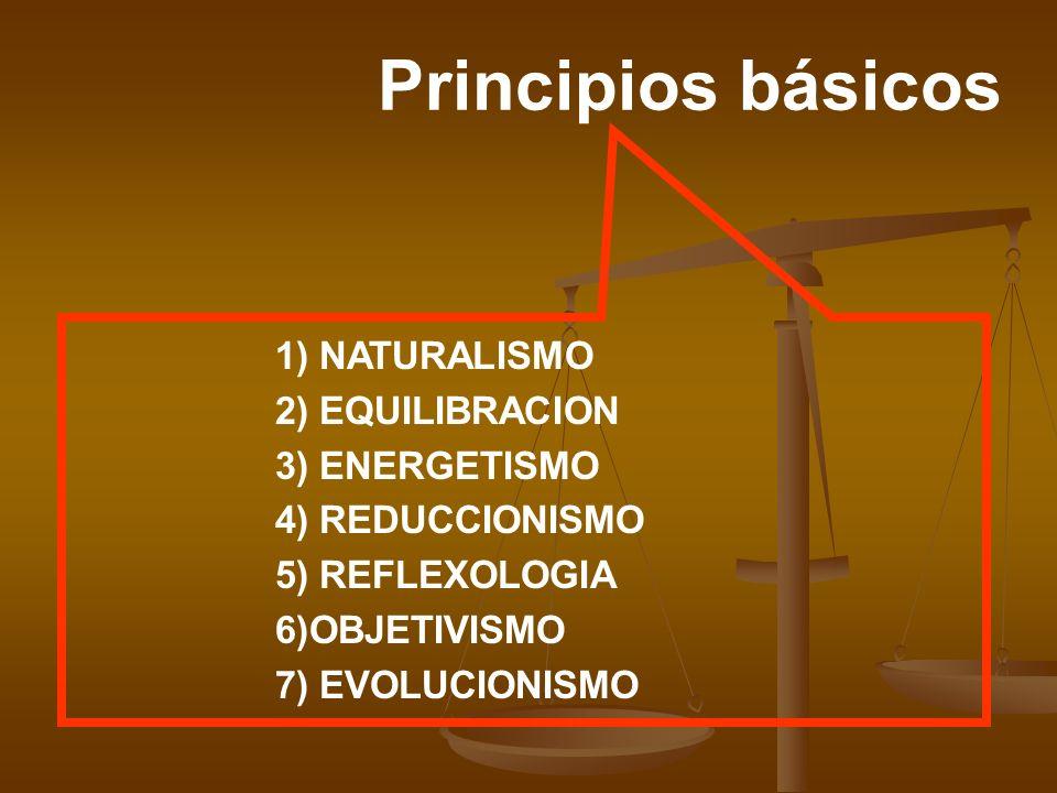 Principios básicos 1) NATURALISMO 2) EQUILIBRACION 3) ENERGETISMO