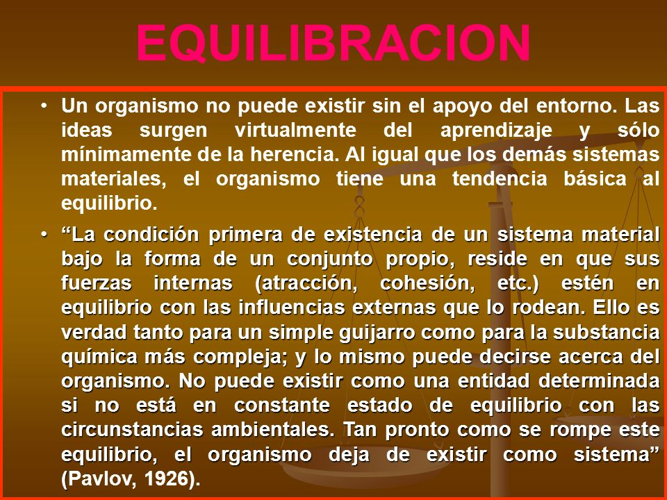 EQUILIBRACION