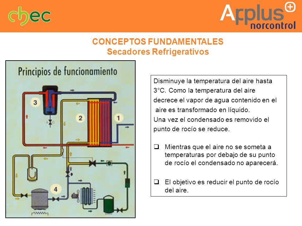 CONCEPTOS FUNDAMENTALES Secadores Refrigerativos