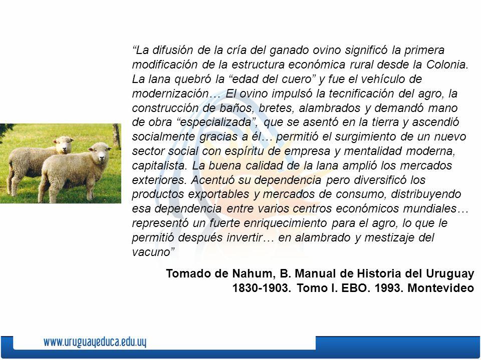 La difusión de la cría del ganado ovino significó la primera modificación de la estructura económica rural desde la Colonia. La lana quebró la edad del cuero y fue el vehículo de modernización… El ovino impulsó la tecnificación del agro, la construcción de baños, bretes, alambrados y demandó mano de obra especializada , que se asentó en la tierra y ascendió socialmente gracias a él… permitió el surgimiento de un nuevo sector social con espíritu de empresa y mentalidad moderna, capitalista. La buena calidad de la lana amplió los mercados exteriores. Acentuó su dependencia pero diversificó los productos exportables y mercados de consumo, distribuyendo esa dependencia entre varios centros económicos mundiales… representó un fuerte enriquecimiento para el agro, lo que le permitió después invertir… en alambrado y mestizaje del vacuno