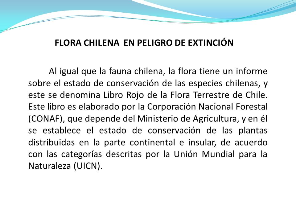 FLORA CHILENA EN PELIGRO DE EXTINCIÓN Al igual que la fauna chilena, la flora tiene un informe sobre el estado de conservación de las especies chilenas, y este se denomina Libro Rojo de la Flora Terrestre de Chile.
