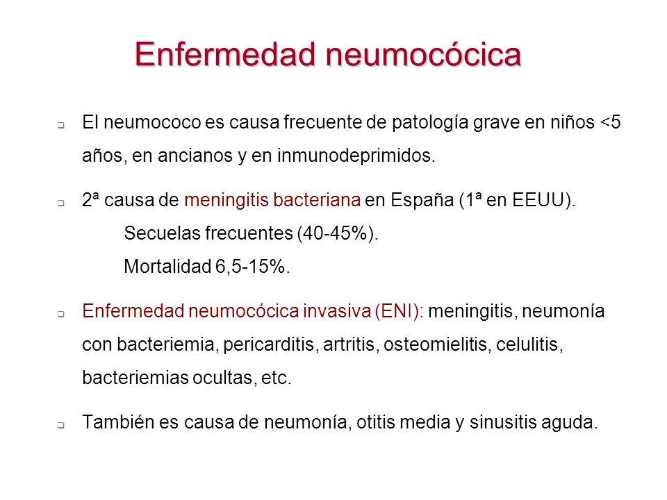 Enfermedad neumocócica