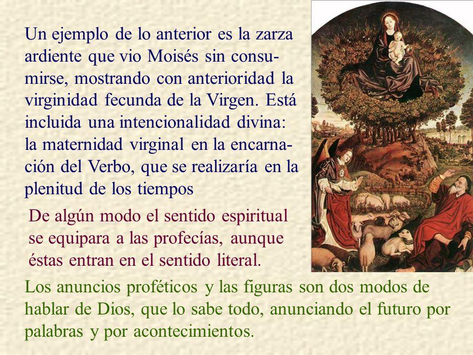 Un ejemplo de lo anterior es la zarza ardiente que vio Moisés sin consu-mirse, mostrando con anterioridad la virginidad fecunda de la Virgen. Está incluida una intencionalidad divina: la maternidad virginal en la encarna-ción del Verbo, que se realizaría en la plenitud de los tiempos