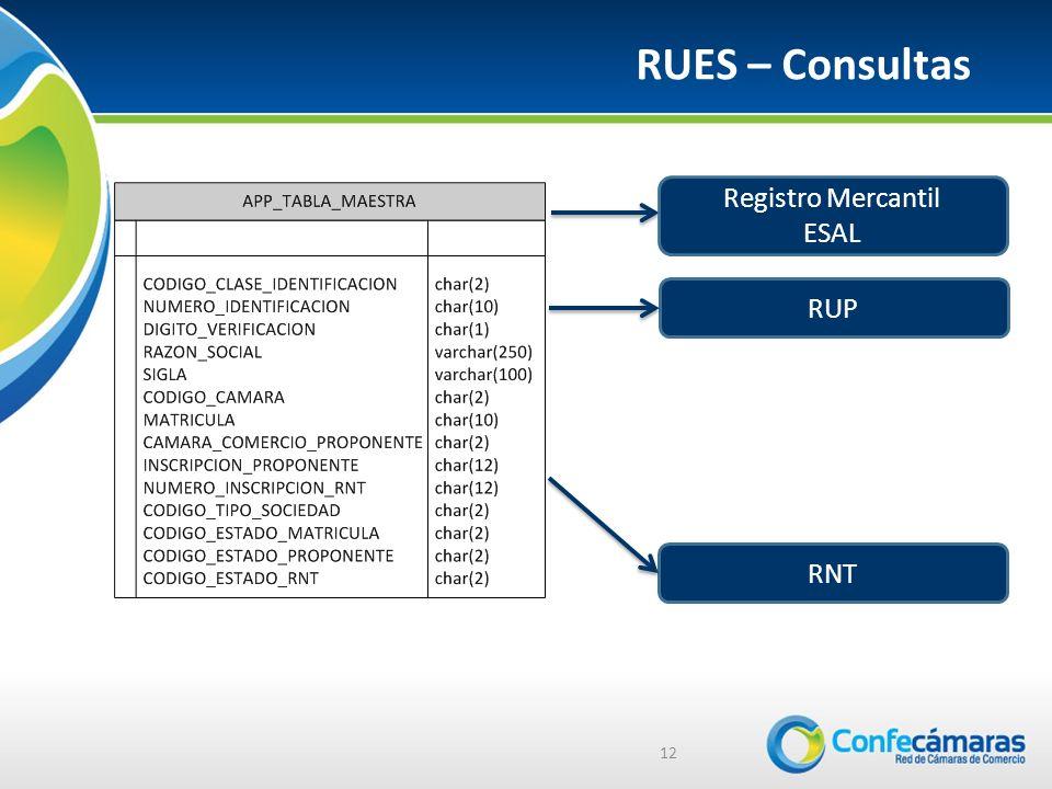 RUES – Consultas Registro Mercantil ESAL RUP RNT