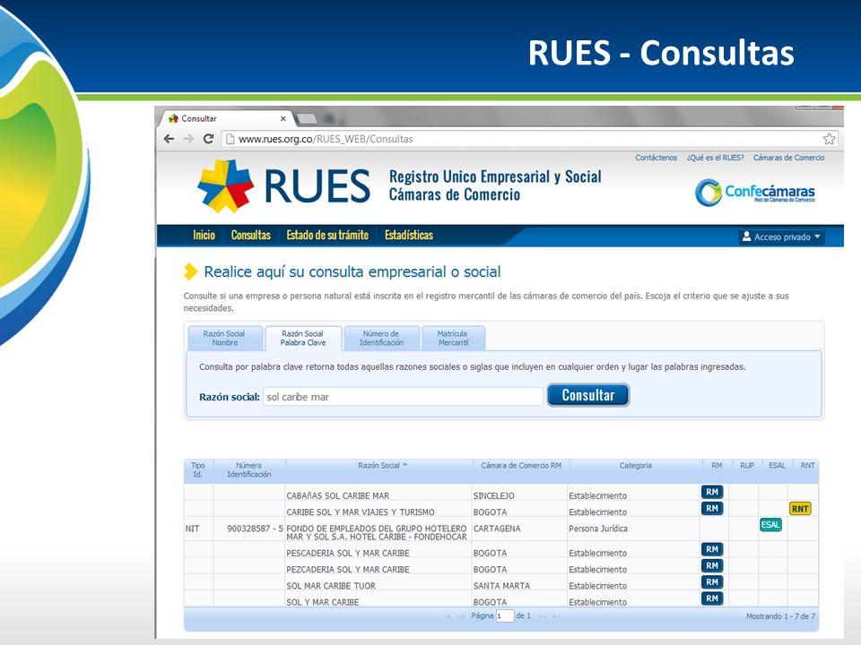 RUES - Consultas