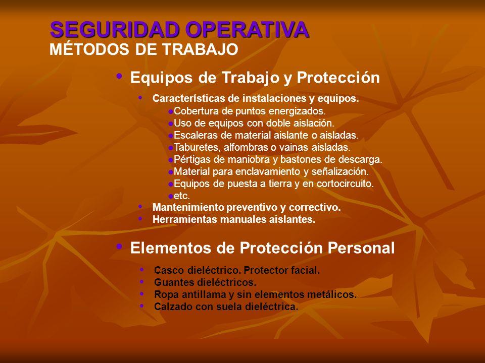 SEGURIDAD OPERATIVA MÉTODOS DE TRABAJO Equipos de Trabajo y Protección