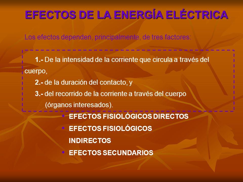 EFECTOS DE LA ENERGÍA ELÉCTRICA