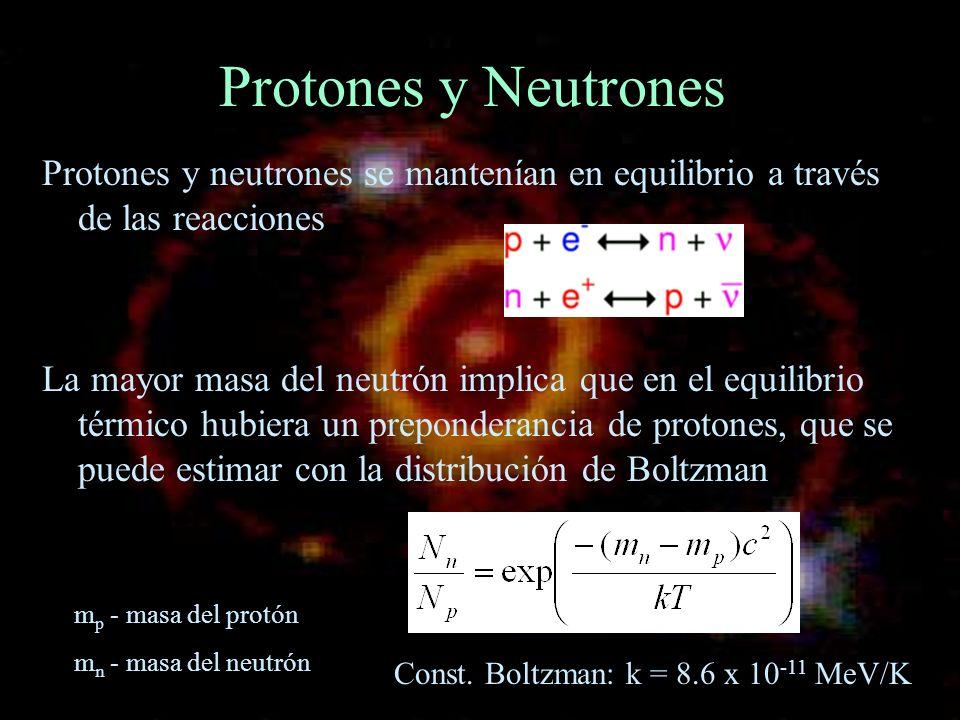 Protones y Neutrones Protones y neutrones se mantenían en equilibrio a través de las reacciones.
