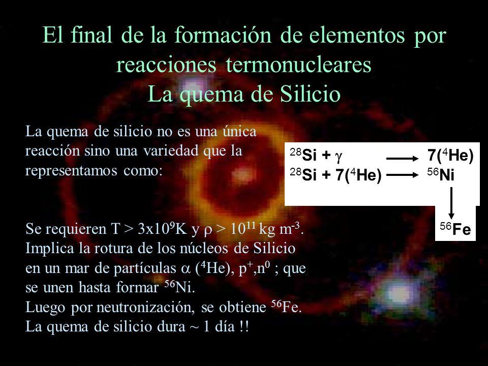 El final de la formación de elementos por reacciones termonucleares La quema de Silicio