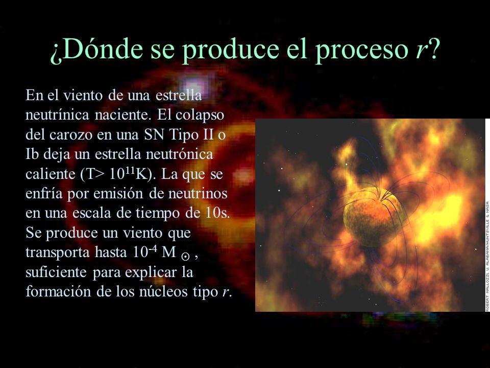 ¿Dónde se produce el proceso r