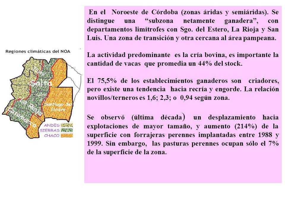 En el Noroeste de Córdoba (zonas áridas y semiáridas)
