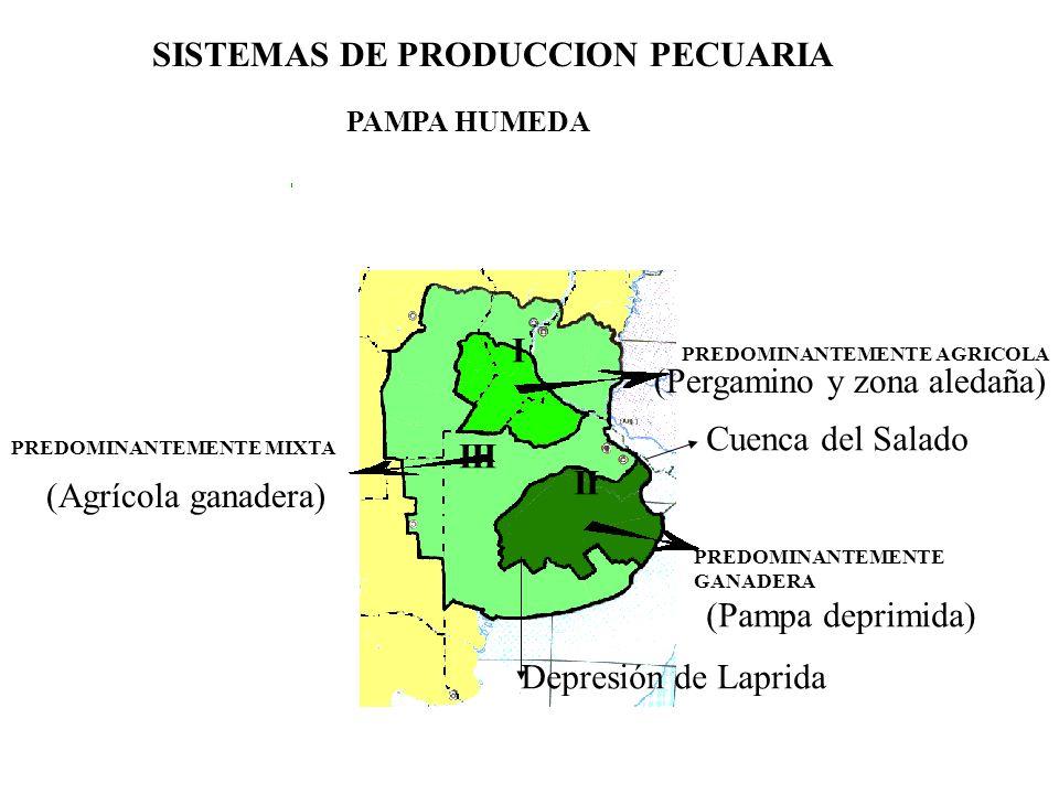 SISTEMAS DE PRODUCCION PECUARIA
