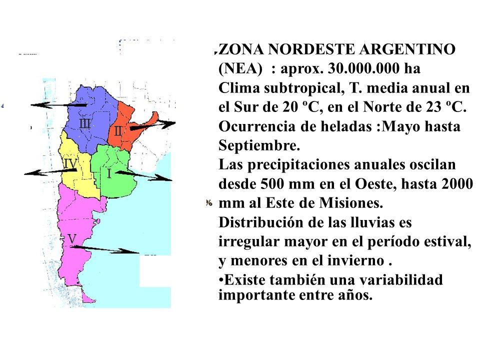ZONA NORDESTE ARGENTINO