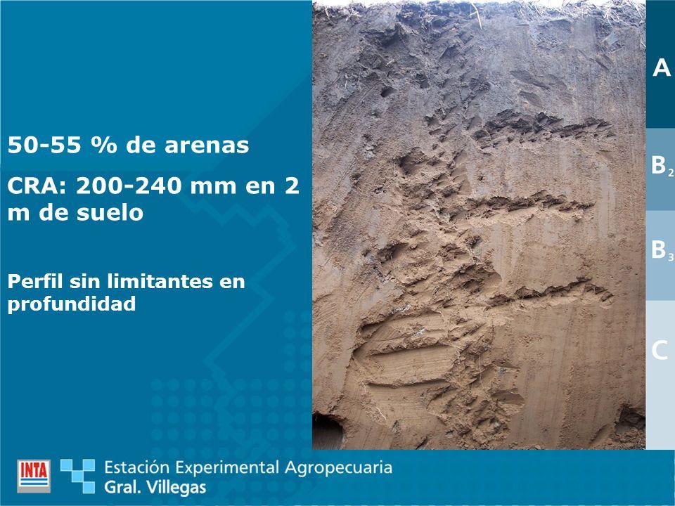 50-55 % de arenas CRA: 200-240 mm en 2 m de suelo