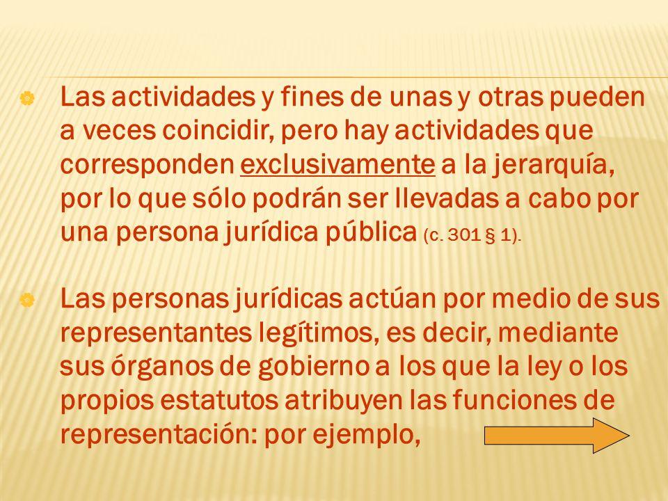 Las actividades y fines de unas y otras pueden a veces coincidir, pero hay actividades que corresponden exclusivamente a la jerarquía, por lo que sólo podrán ser llevadas a cabo por una persona jurídica pública (c. 301 § 1).