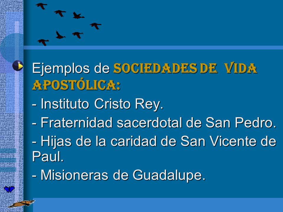 Ejemplos de sociedades de vida apostólica: