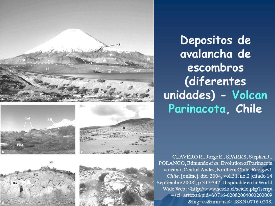 Depositos de avalancha de escombros (diferentes unidades) - Volcan Parinacota, Chile